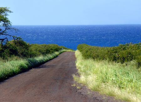 backroad: Backroad on the Big Island of Hawaii dips over the edge and lands in the Pacific Ocean   Grasses blow in the warm tropical trade winds
