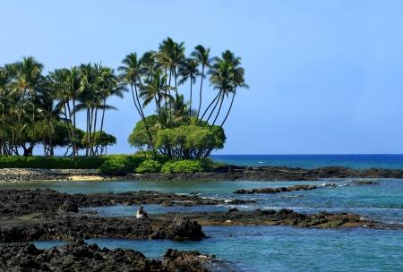 mujer mirando el horizonte: Mujer joven se sienta en las rocas de lava de Anaehoomalu Bay, en la costa de Kohala de la Gran Isla de Hawai Ella est� mirando una tortuga de mar verde que est� tomando el sol en la luz del sol y descansar