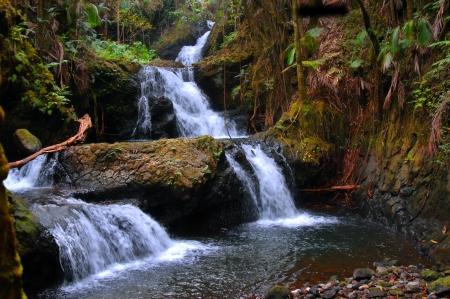 UNAMA Falls in de Hawaii National Botanical Garden op de Big Island van Hawaï is een verborgen parel Tier na Tier water valt zachtjes naar de bodem en wordt omringd door regenwoud schoonheid