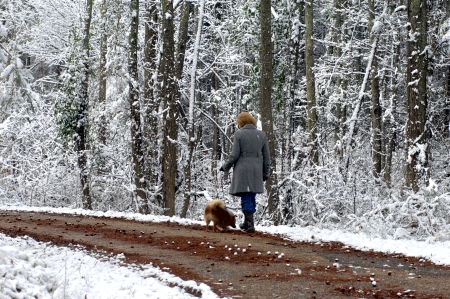 backroad: Woman and her pomeranian ambles down a quiet backroad surounded by snow covered trees