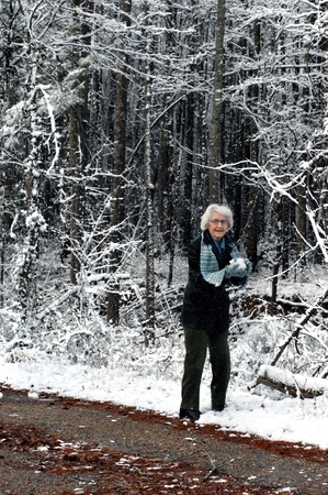 Elderly woman prepares a snowball to join in a snowball fight on a quiet country backroad   Snow flakes shower upon her from the loaded trees overhead  photo