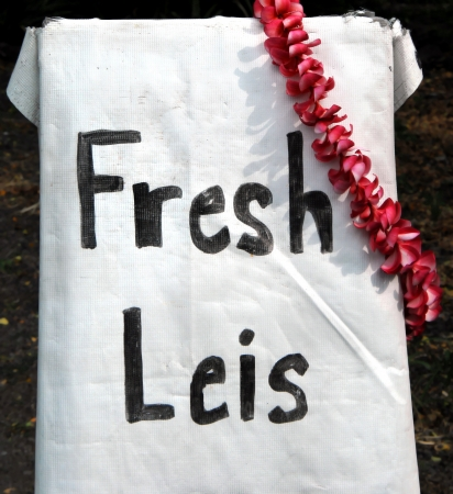 leis: Fresh leis, made by big island of hawaii resident, hangs as advertisement at roadside stand. Stock Photo