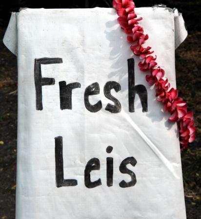 leis: Leis freschi, realizzati da grande isola di Hawaii, residente si blocca come pubblicit� presso lo stand strada.