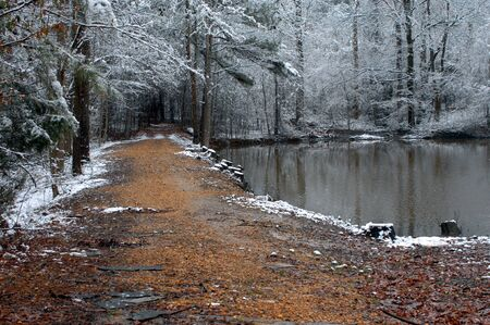 backroad: Narrow gravel road winds through woods on a dark snowy day.  Southern Arkansas pine forest with small pond.