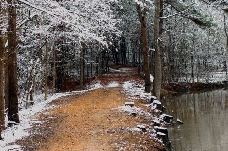 bleak: Arkansas backroad narrows from a one lane gravel road to a tree tunnel covered path.  Small pond sits to right of dirt and gravel lane.  Snow covered trees overhang their branches touching over road.