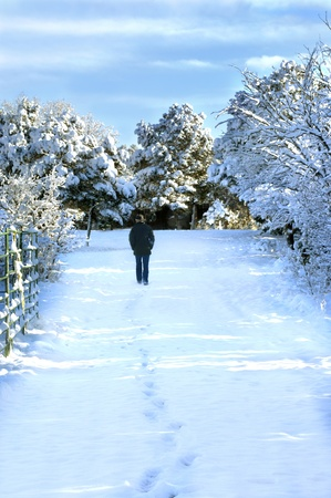 Man walks down a path covered in snow.  His footprints follow him.  New Mexico scenery of woods covered with blanket of snow. photo