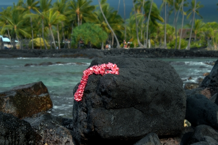 Pink Plumaria lei lays on a large rock on the beach surrounding Puuhonua o Honaunau National Historical Park on the Big Island of Hawaii. photo