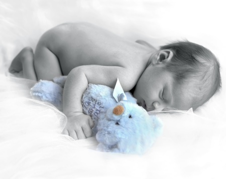 Tiny newborn boy hugs a blue teddy bear and slumbers away.  Soft white netting cushions his nap. Stock Photo