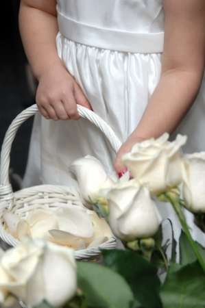 Small flower girl helps get ready for wedding by picking\ white rose petals to fill her basket.