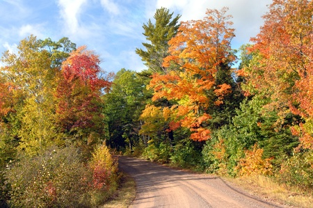 backroad: Quiet backroad in upper penninsula, michigan is lined and surrounded by beautiful autumn foliage in orange, yellow and red during October each year  Stock Photo