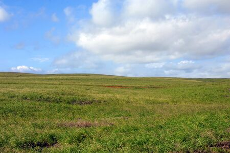 as far as the eye can see: Grassy farmland of the South Point stretches as far as the eye can see on the Big Island of Hawaii.