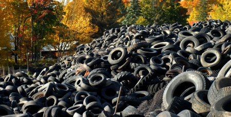 Upper Penninsula, Michigan, tire graveyard is piled high   Colorful Autumn leaves add the only beauty to the image  Stock Photo