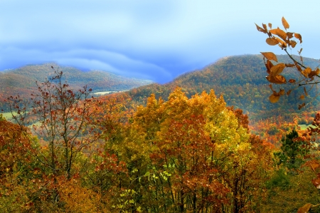 Gold and Orange glows in the autumn leaves of the Ozark Mountains in northern Arkansas   Misty clouds roll over the valley                               Stock Photo