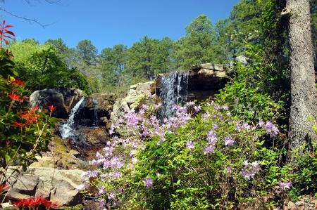 Beautiful flowers frame waterfalls at Garvin's Woodland Garden in Hot Springs, Arkansas.