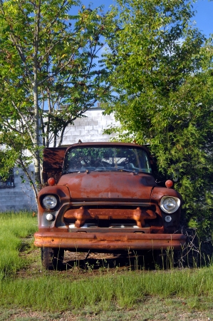 trashed: Rusting and overgrown Chevy truck sits parked in field. Stock Photo