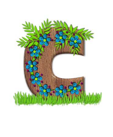 letter c: Alphabet letter C, is part of the alphabet set Blooming Vine  Wooden letter has climbing vine decorated with flowers and burgundy dots.  Grass grows around base of letter. Stock Photo