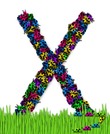 The letter X, in the alphabet set Lotsa Ladybugs, is covered in crawling ladybugs.  Ladybugs are blue, yellow, green, purple and hot pink. photo