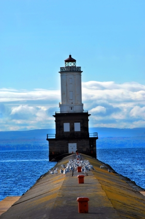Seagulls and one eagle rests on the pier leading to the Keweenaw Waterway Lighthouse.   photo