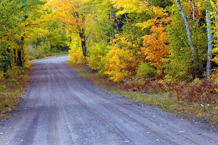 backroad: Michigan backroad disappears into golden foliage on a quiet country lane on the Keweenaw Peninsula.