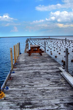 marquette: Old dock pier supports lay submerged besides newer dock.  Seagulls sit on tops.  Picnic table provides lakeside park on Lake Superior in Marquette, Michigan.