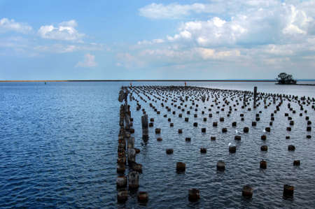 marquette: Seagulls rest on tops of sawed off dock pillings in Maruette Harbor in Upper Peninsula, Michigan.