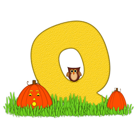 pumpkin patch: The letter Q, in the alphabet set Pumpkin Patch  is  a yellow and and sits in the green grass of a pumpkin patch.  Two orange pumpkins and an owl decorate letter. Stock Photo