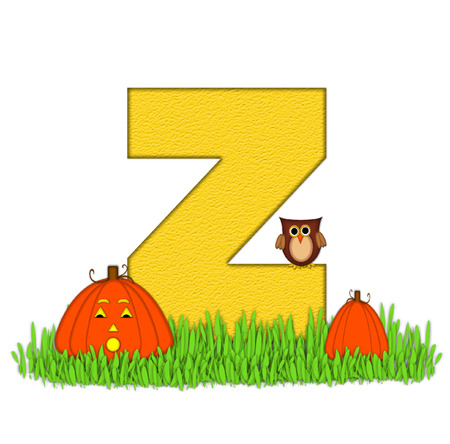 pumpkin patch: The letter Z, in the alphabet set Pumpkin Patch  is  a yellow and and sits in the green grass of a pumpkin patch.  Two orange pumpkins and an owl decorate letter.