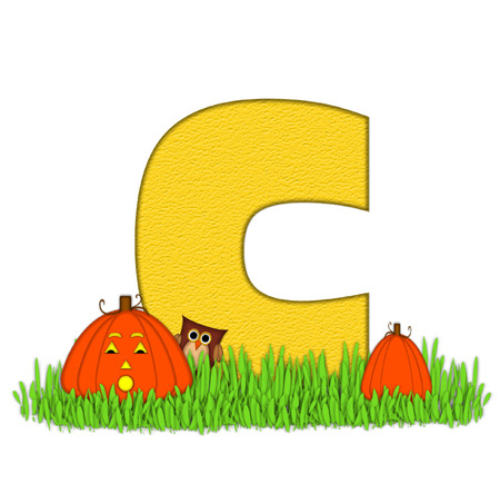pumpkin patch: The letter C, in the alphabet set Pumpkin Patch  is  a yellow and and sits in the green grass of a pumpkin patch.  Two orange pumpkins and an owl decorate letter.