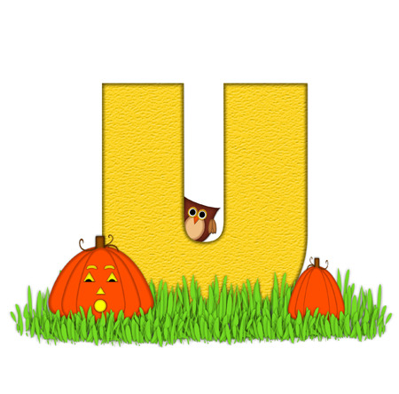 pumpkin patch: The letter U, in the alphabet set Pumpkin Patch  is  a yellow and and sits in the green grass of a pumpkin patch.  Two orange pumpkins and an owl decorate letter.