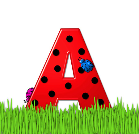has: The red letter A, in the alphabet set Lady Bug Red, has large black polka dots and is decorated with 3D ladybugs.  Letter is nestled in tall, garden grass.