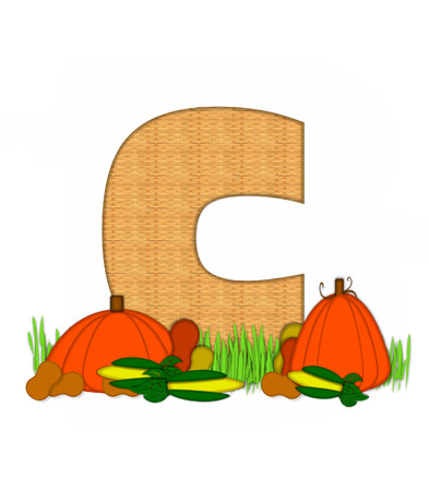 pumpkin patch: The letter C in grassy field surrounded by fall vegetables.