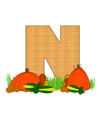 grassy field: The letter N, in the alphabet set Blessed Bounty, is filled with wicker texture.  Letter sits in grassy field surrounded by Fall vegetables. Stock Photo