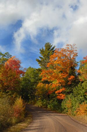 backroad: Dirt lane disappears into Autumn foliage on a country backroad in Upper Peninsula, Michigan.