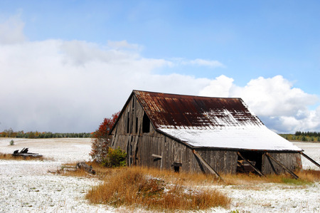 michigan snow: Agriculture bygone days is illustrated by this wooden barn propped up with boards to prevent its collapse.  Snow covers field and part of roof.  Autumn shows in trees lining field.