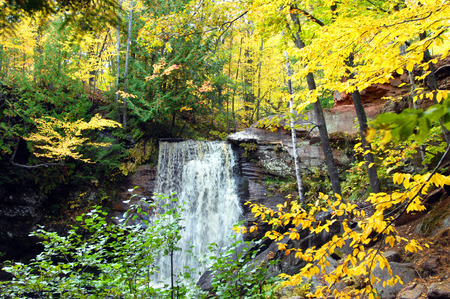upper peninsula: Hungarian Falls is surrounded by Autumn beauty with gold and yellow everywhere.  Falls are in the Upper Peninsula of Michigan.