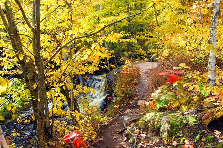 twisting: Twisting Autumn trail leads to the Hungarian Falls on the Keweenaw Peninsula of Michigan. Stock Photo