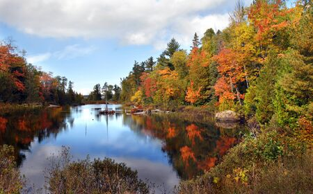 slew: Autumn is reflected in still waters on the Keweenaw Peninsula in Michigan.  Water is tinted with orange and yellow in a blaze of color. Stock Photo