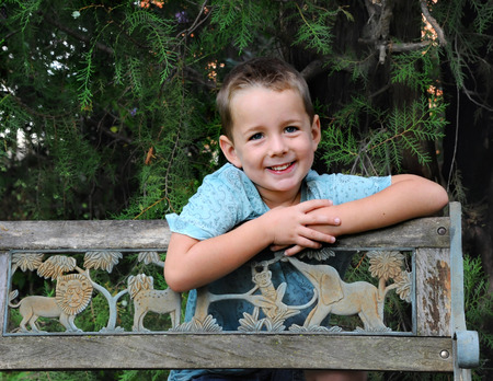 limbs: Little boy leans over a wooden bench and grins.  He is wearing a blue shirt and is surrounded by evergreen limbs.