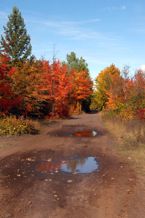 backroad: Backroad in Upper Penninsula, Michigan is muddy and has watery reflection of Autumn leaves.  Dirt road disappears into the colorful leaves.