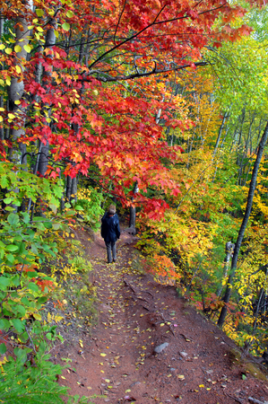 Two women hike the Hungarian Falls trail on the Keweenaw Peninsula in Michigan.  Autumn colors of red and orange surrounds them.