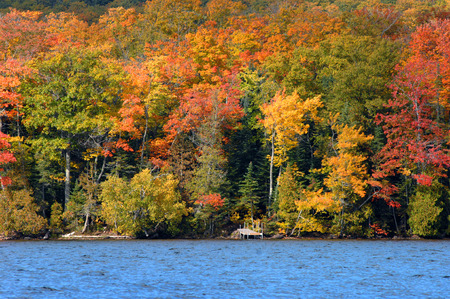 superior: Near Copper Harbor, man-made pier juts out onto Lake Superior.  It is surrounded by Autumn color.