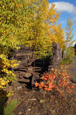 abandoned car: Abandoned relics of the Quincy Copper Mine, coal cars sit and decay on Quincy Hill above Houghton, Michigan.  Fall leaves overhang wooden cars as they sit on forgotten train tracks.