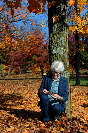 admiring: Elderly woman leans against a tree and hold a single yellow leaf.  She is admiring Autumn in North Arkansas.  She has on jeans and has white hair.