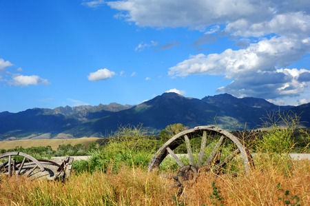 pioneers: Abandoned and broken down wagons face the Absaroka Mountain Range in Paradise Valley, Montana.  Tall grass and weeds have overgrown the wooden structures.