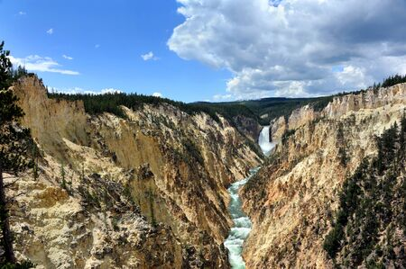 lower yellowstone falls: Vista shows the Grand Canyon of the Yellowstone in Yellowstone National Park.  Steep canyon walls with yellow tint leads your eye to the Lower Falls in Yellowstone National Park.