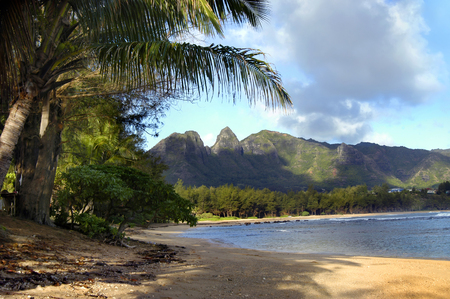 surrounds: Beautiful scenery surrounds this beach on the island of Kauai, Hawaii.  Mountains and palm trees surround image.