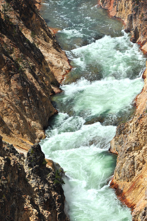 canyon walls: As the Yellowstone River leaves Lower Falls, its curving waterway is steep and narrow canyon walls.  White water rapids roll and boil.
