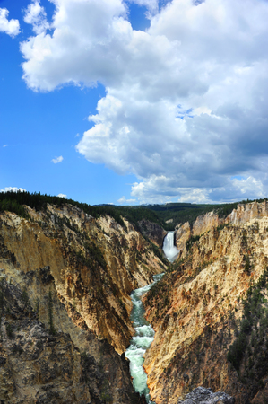 lower yellowstone falls: Steep canyon walls frame the Yellowstone Rivein The Grand Canyon of the Yellowstone, in Yellowstone National Park.  Lower Falls and large white clouds are at back