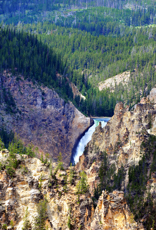 lower yellowstone falls: Lower falls, in Yellowstone National Park, is surrounded by steep and rocky cliffs.  Forest of evergreens grow in background.