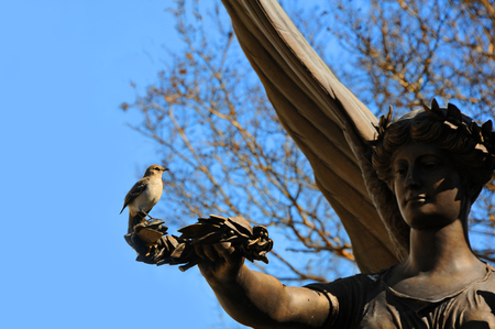 benevolent: Angel statue stands with arm extended holding a branch of peace.  Perched on branch is a single mocking bird.  Concept could include trust, benevolent, peace, security or safe haven.